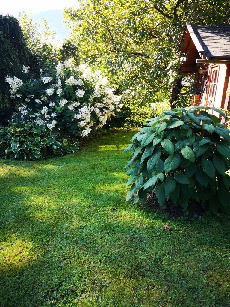 My Garden - Gartengestaltung